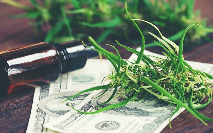cbd products for regular business